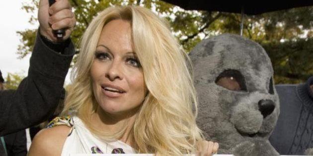 Pamela Anderson contro le pellicce scrive a Israele: