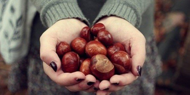 Dieta d'autunno: castagne, zucca e mandorle. 10 super cibi che fanno bene