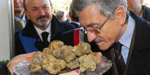 Massimo D'Alema sarà ambasciatore internazionale del tartufo: