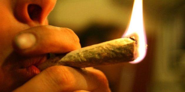 Cannabis, il M5s chiede la liberalizzazione di consumo e coltivazione. Rizzetto: