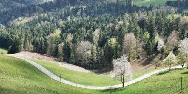 Il ponte battezzato da Tito, il pittore che rifiuta i confini e il carro armato del Wurzenpass (Verde