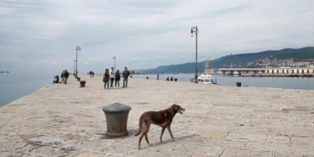 A Gorizia e Trieste, dove in molti hanno nostalgia della Jugoslavia. L'ultima tappa del reportage Verde