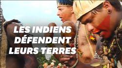 Les Indiens manifestent à Brasilia contre l'avis de