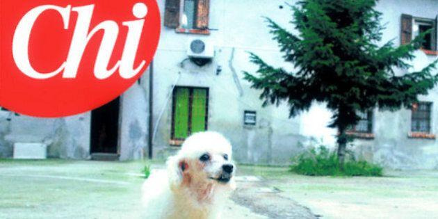 Dudù, il settimanale Chi ritrova Trilly, mamma del cucciolo di Silvio Berlusconi e Francesca Pascale