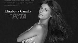 In Usa, la pubblicità più sexy è quella di Elisabetta Canalis e altre star per i diritti degli animali