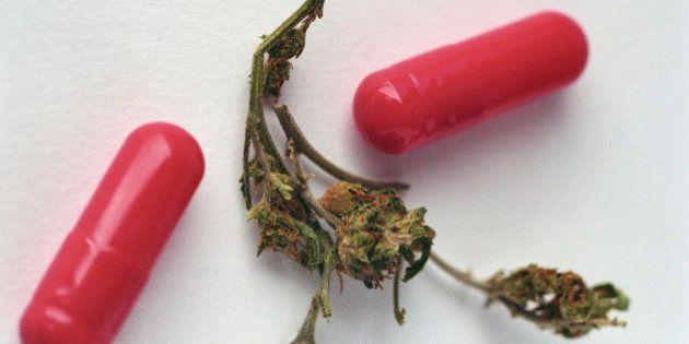 Cannabis, via libera del governo Renzi ai farmaci contenenti Thc. Possibile anche la
