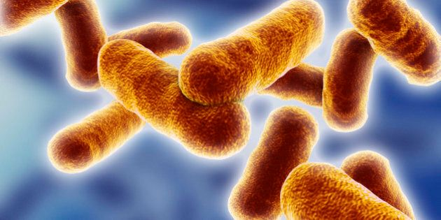 Ceppo Tubercolosi resistente agli antibiotici si sta diffondendo in Russia