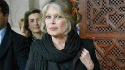 Dopo Depardieu, anche Brigitte Bardot vuole diventare russa (ma per salvare gli elefanti)