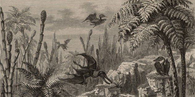 UNSPECIFIED - CIRCA 1754: Scene during the Lias period, showing Pterodactyls, a dragonfly, Equisetums,...