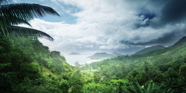 Henry Miller, ragazzo di 19 anni morto in un rituale tribale in Colombia. Ad ucciderlo forse