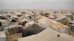 Dov'è avvenuta la prima Occupy? Nel deserto del