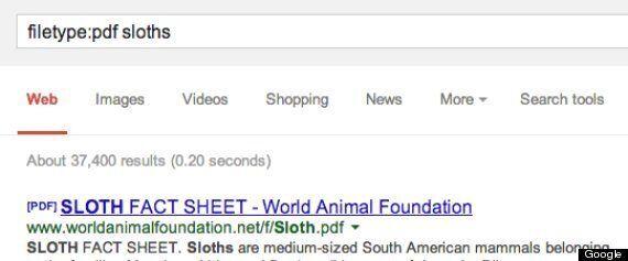 Google, le 29 cose meravigliose che non sapete (ma dovreste!) sul motore di ricerca più grande del mondo