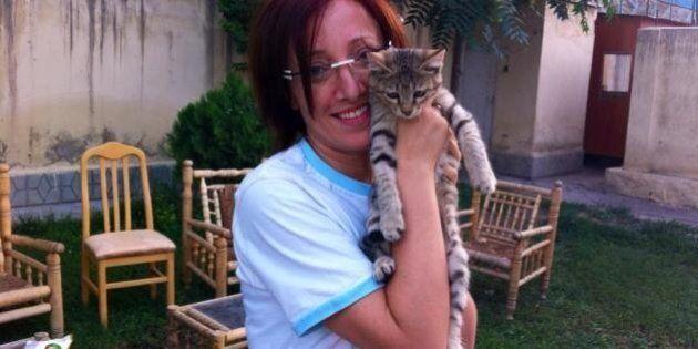 Barbara Balanzoni salvò la vita a un gatto in Kosovo. L'ufficale è finita sotto processo