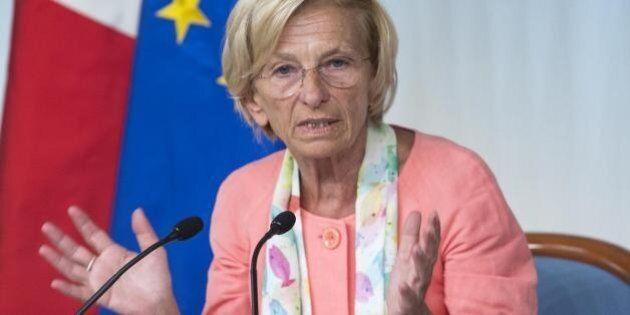 Referendum Svizzera, Emma Bonino: