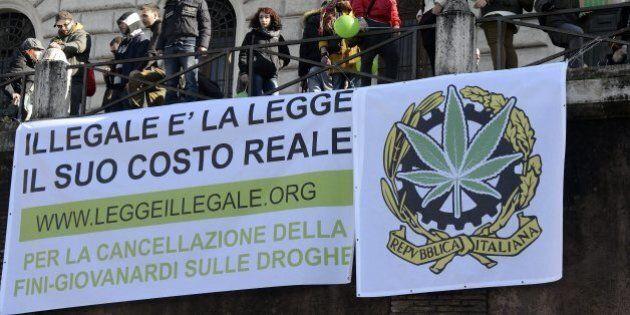Fini Giovanardi incostituzionale: la cannabis tornerà droga leggera e diecimila detenuti potrebbero uscire...