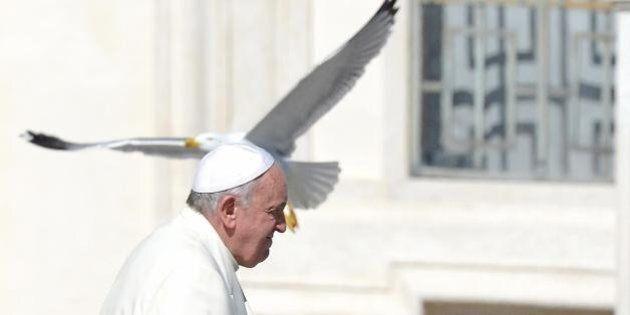 La Gomorra di Bergoglio: da Lampedusa a Sibari un anno di campagna per la legalità. Francesco sabato...