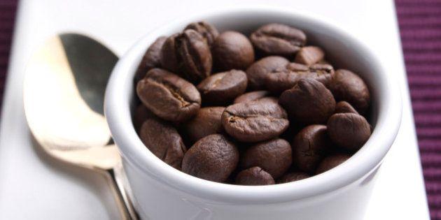 Caffè, l'Arabica a rischio estinzione. Scoperto il Dna: 10 cose da sapere sulla caffeina