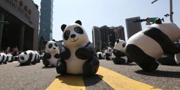 1600 panda arrivano a Hong Kong e invadono le piazze: è l'ultima tappa del 1600 Pandas World Tour