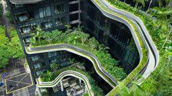L'hotel dagli stupefacenti giardini a spirale