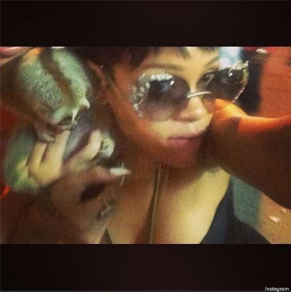 Rihanna, su Instagram la foto con una scimmia