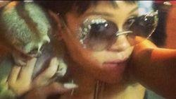 Rihanna pubblica su Instagram scatti con animali protetti. E scoppia la polemica, due uomini vengono arrestati