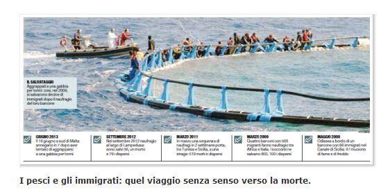 Senatori-tonno o migranti disperati? Cara senatrice Bottici faccia più