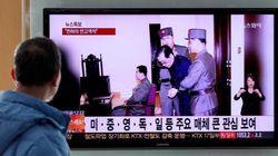 Corea, lo zio del dittatore sbranato da 120 cani