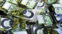 A Washington da oggi la marijuana si compra senza ricetta