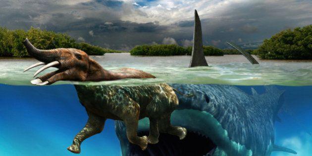 Dinosauri, la paleoarte di Julius Csotonyi. Il mondo preistorico non è mai stato così feroce