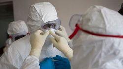 Ebola potrebbe arrivare in Gran Bretagna e Francia entro tre