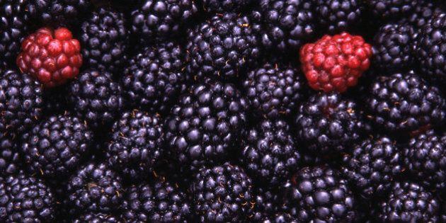 Dieta Dash: con poco sale e proteine e molta frutta e verdura si riducono i rischi cardiovascolari