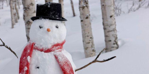 Meteo, grande freddo in arrivo. Prevista neve al nord e sulle colline del centro. A Capodanno venti dalla