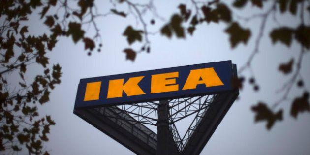 Ikea abbatte alberi di 600 anni di età per fare i mobili? Sospesa la certificazione di sostenibilità...