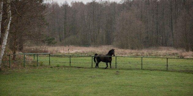 Sul Baltico, dove partiva la cortina di ferro, nessuno sa più dov'è l'ex confine tra le due Germanie...