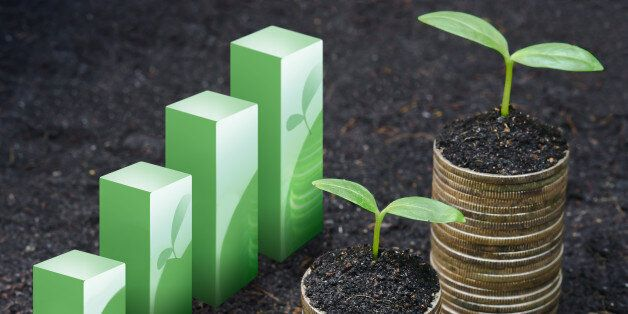 tress growing on coins with green graph / csr / sustainable development / economic growth / trees growing on stack of coins