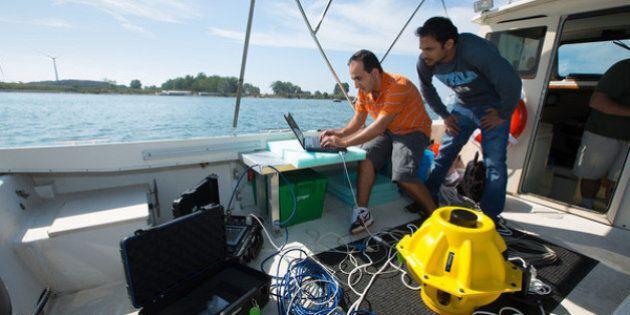 Internet e wifi sott'acqua. Alla Buffalo University si studia per far viaggiare il segnale in mare e...