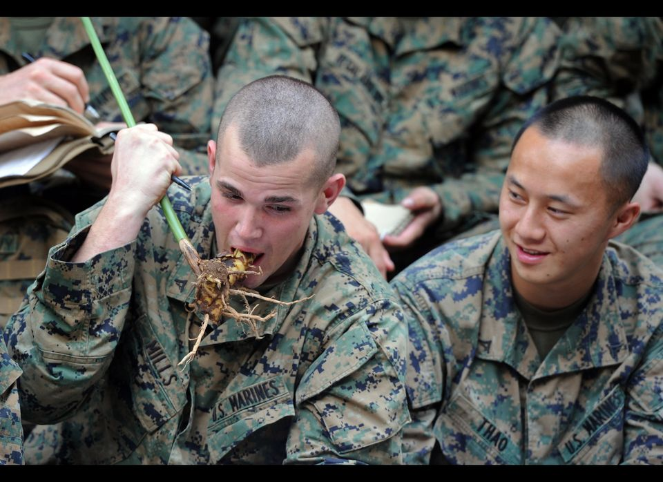 A US Marine (L) eats a locally grown herb during a jungle survival program as part of the annual Cobra Gold 2012 combined mil