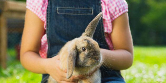 Gli animali domestici aiutano i bambini affetti da autismo. La ricerca: