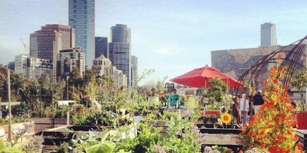 Terrazze verdi e pannelli fotovoltaici sui nuovi edifici. In Francia una legge per l'ecosostenibilità...