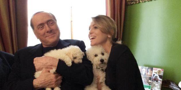 Maria Vittoria Brambilla regala un cucciolo di Golden Retriever a Silvio Berlusconi. Dopo Dudù e Dudina...
