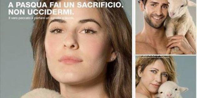 #salvaunagnello: la campagna contro l'uccisione degli agnelli: