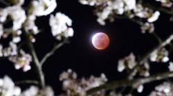 La Luna si fa