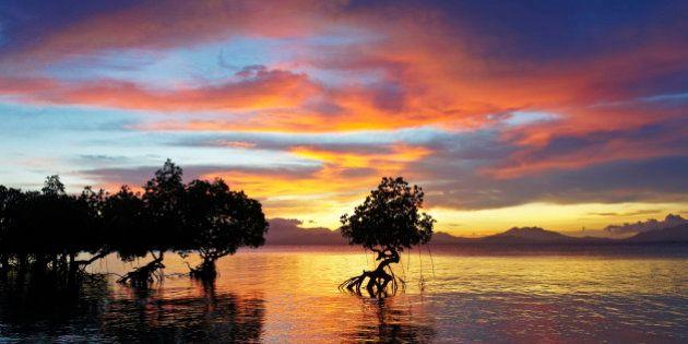 L'isola più bella del mondo? È Palawan, nelle Filippine: votata dai lettori di Conde Nast per i 2014...