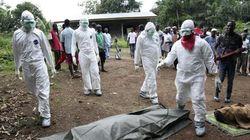 Ebola, alto funzionario Usa: