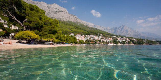 L'ecosistema del Mar Adriatico profondamente mutato a causa dell'uomo, secondo i ricercatori dell'University...