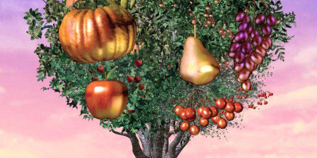 Eliminare gli oppositori: ecco come l'Industria degli OGM risponde alle