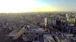 Servizio pubblico, Gaza e Pink Floyd