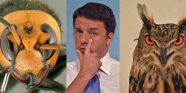 Alcatel, Matteo Renzi a Vimercate, proteste e lancio di uova contro l'auto. In serata la cena di autofinanziamento...