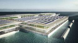 Questa fattoria solare galleggiante non è