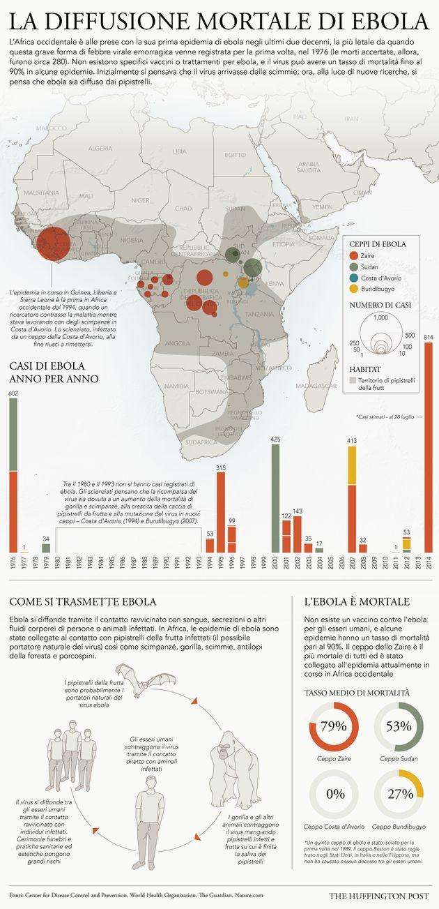 Ebola, Banca mondiale: sull'economia dei Paesi colpiti un impatto catastrofico